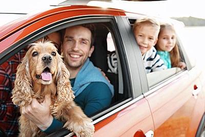 Hond gratis meeverzekerd op de kortlopende reisverzekering